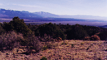 mountain land for sale in Taos County on Cerro Montoso