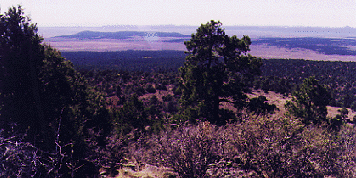 off-grid mountain land in Taos County, Cerro Montoso