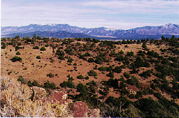 Taos County mountain land for sale on Cerro Montoso